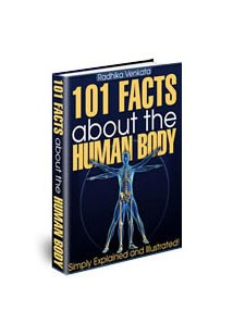 101 Facts About the Human Body Book Cover