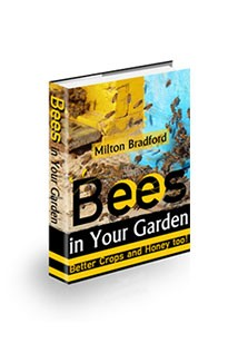 Book cover for bees in your garden Book Cover