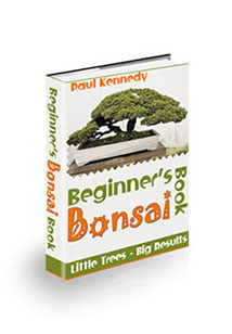 Book Cover For Beginner's Bonsai Book