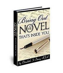 Book cover for bring out the novel that's inside you