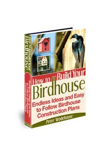 How to Build Your Birdhouse Book Cover