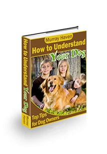 How to Understand Your Dog Book Cover