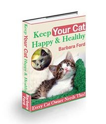 Keep Your Cat Happy and Healthy Cover