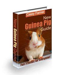 New Guinea Pig Guide Cover