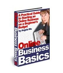 Online Business Basics Book Cover