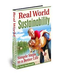 Real World Sustainability Book Cover