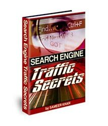 Search Engine Traffic Secrets Book Cover