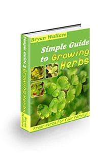 Simple Guide to Growing Herbs Book Cover