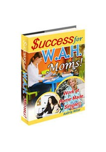 Success for W.A.H. Moms Book Cover