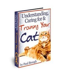 Understanding Caring For And Training Your Cat Book Cover