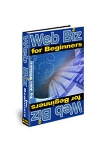Web Biz for Beginners Book Cover