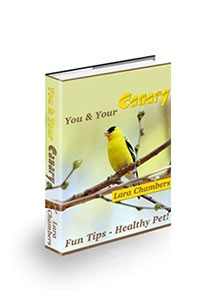 You and Your Canary Book Cover