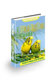 Your New Budgie Guide Book Cover