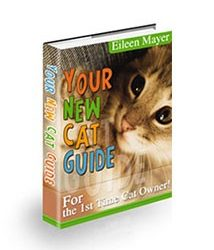 Your New Cat Guide Book Cover