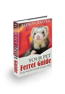 Your Pet Ferret Guide Book Cover