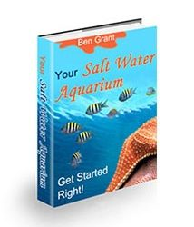 Your Salt Water Aquarium Book Cover